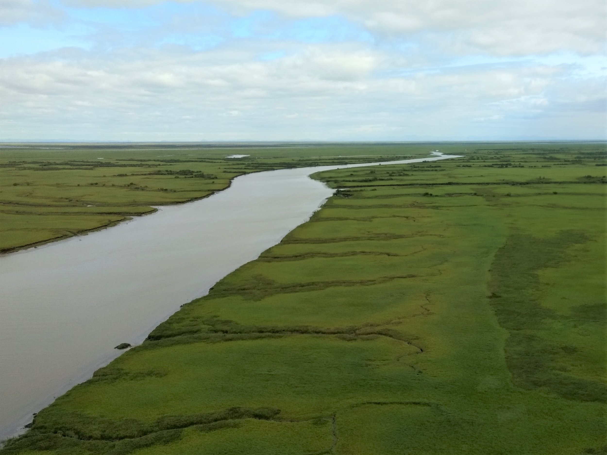 A tidally-influenced channel near the mouth of the Kuskokwim River (notice the rills perpendicular to the channel that form from high tides receding into the channel).  Photo Credit: Andy Robertson