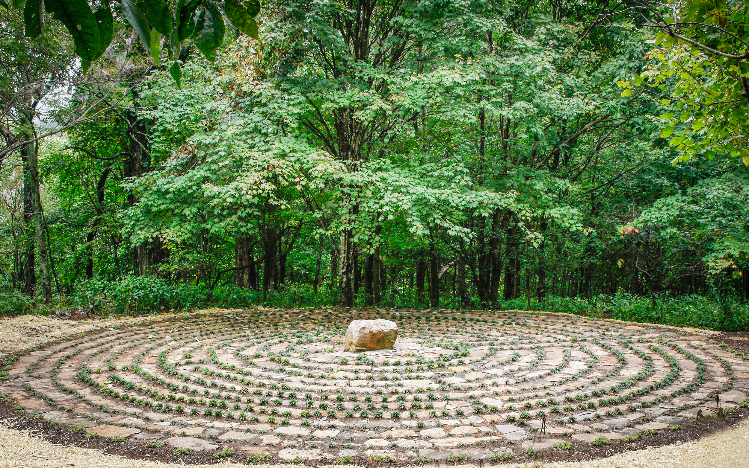 labyrinth_5155.jpg