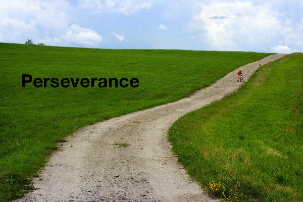Perseverance.jpeg