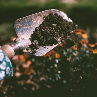 Soil Management.jpg