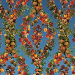 19_everyones-a-georgia-peach.jpg