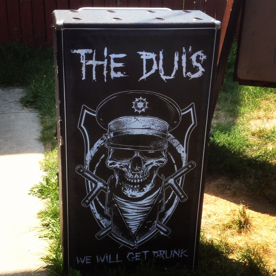 Ampeg 810 Custom Grill Cloth | The DUIs