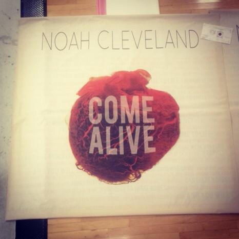 6' x 6' Mesh Band Scrims | Noah Cleveland