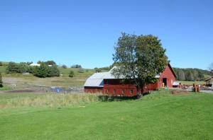 One of the original barns