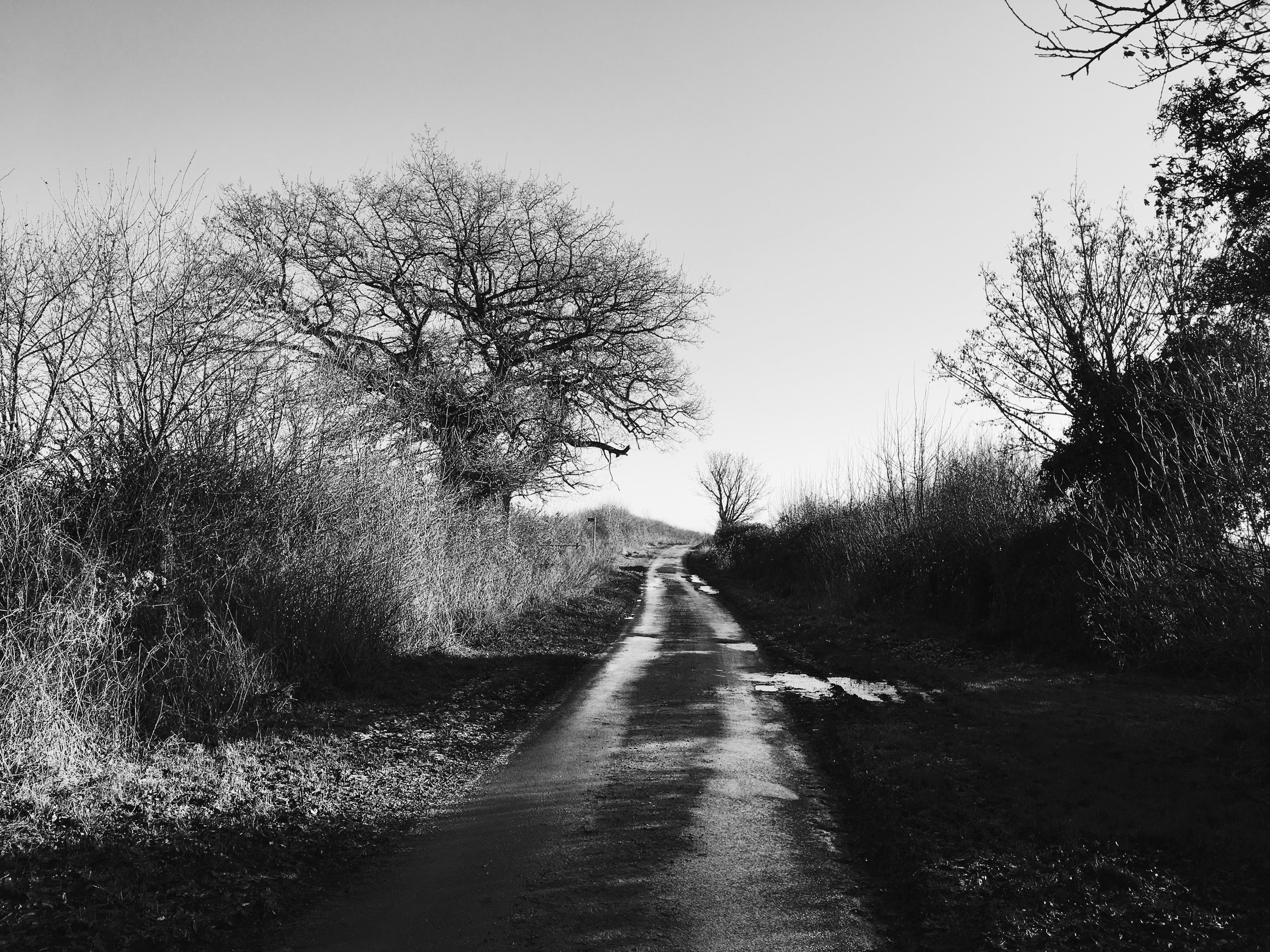 From a walk on a chilly day in Southrop, in the Cotswolds