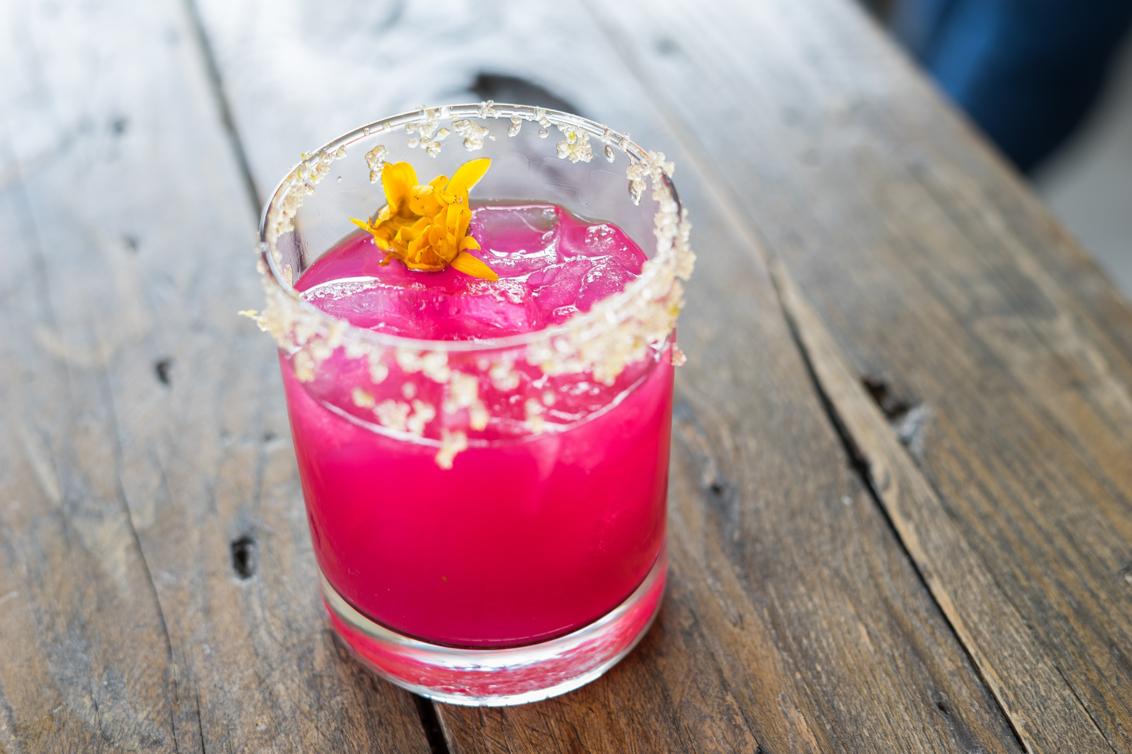 Prickly Pear Margarita at Salazar, Frogtown, Los Angeles, CA
