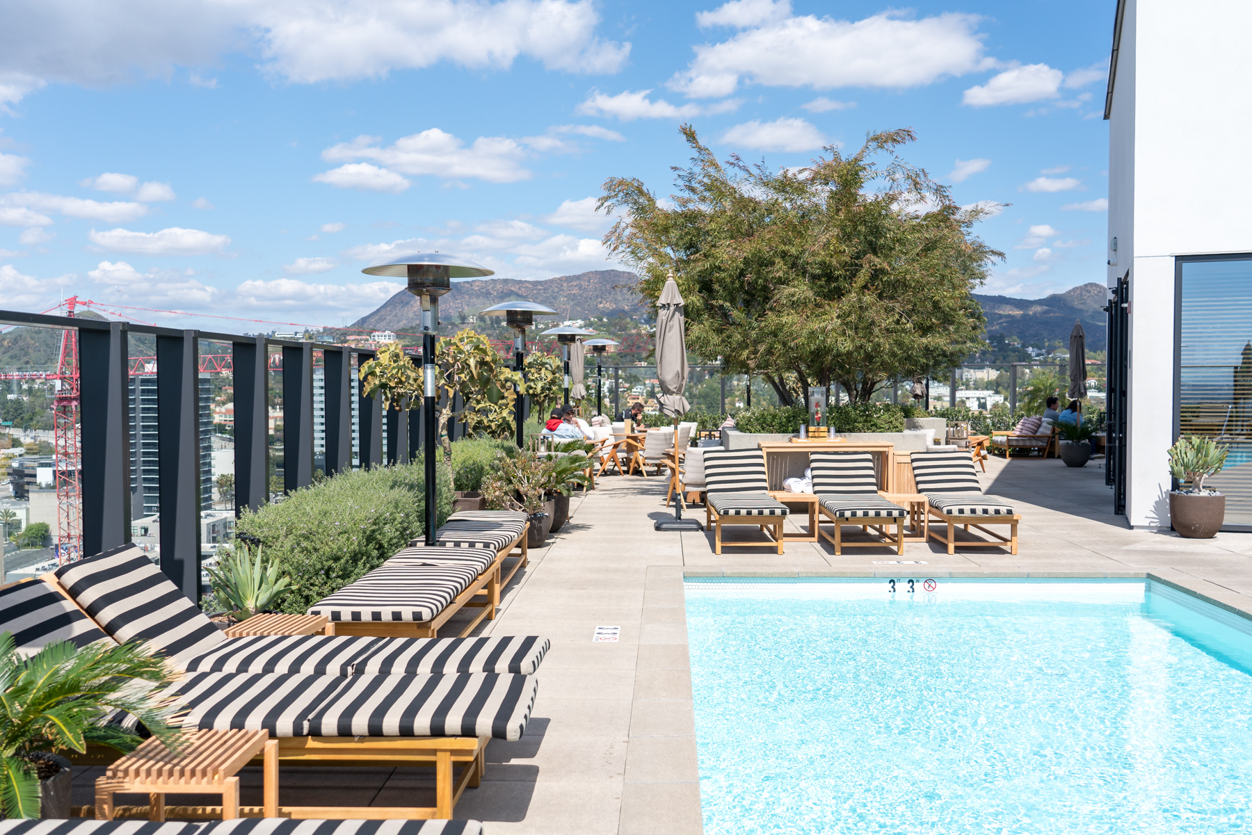 Pool with a View, Filifera, Hollywood, CA - Brunchographers