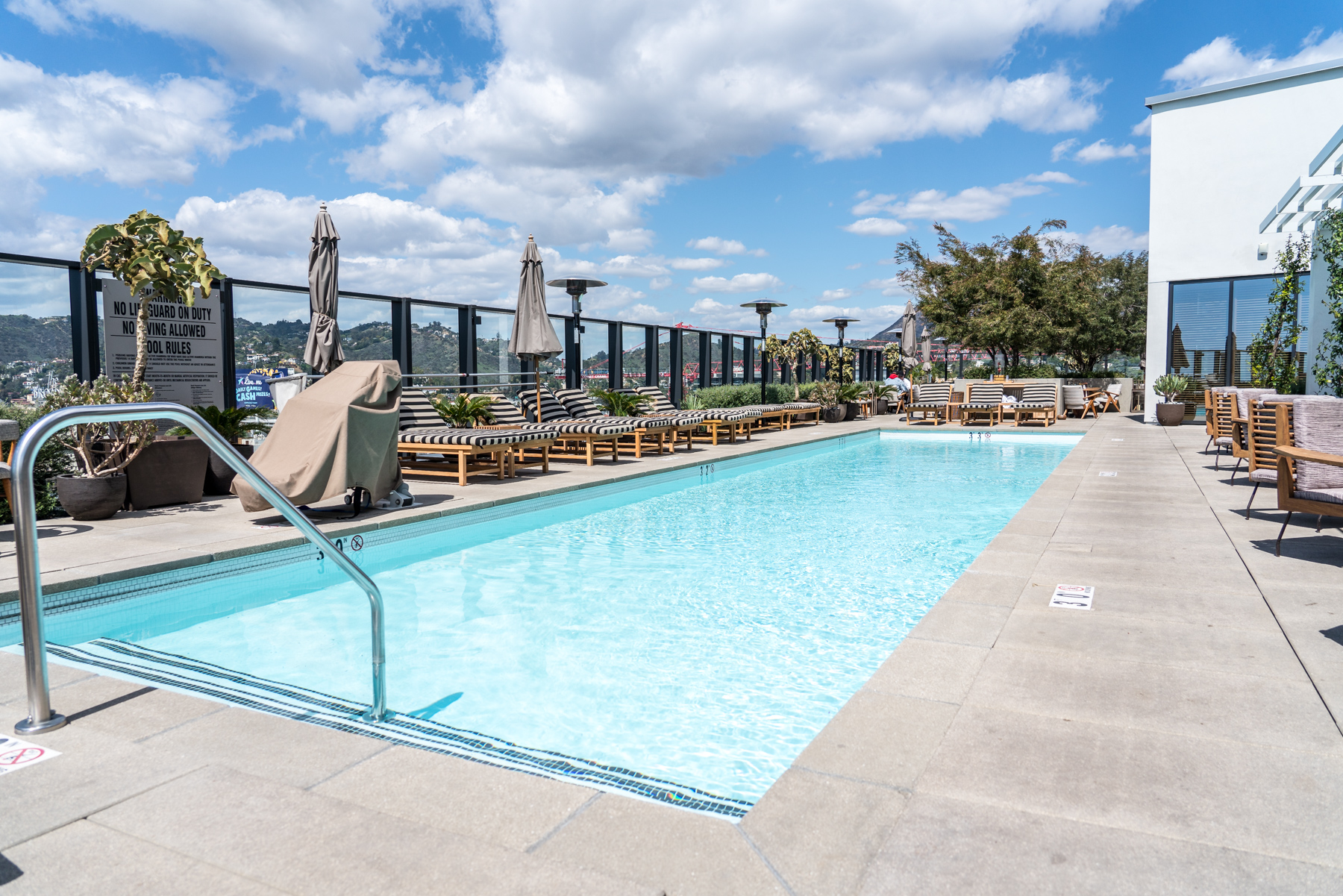 Pool with a View,Filifera, Hollywood, CA - Brunchographers