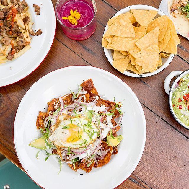 Seeing all those #cincodemayo pics and wishing we were at @salazarfrogtown! Enjoy the day! 🎉 🌮 🍹 . . . #salazarfrogtown #f52grams #feedfeed #infatuationla #eaterla #huffposttaste #abc7eyewitness #foodphotography #foodie #foodgasm #chilaquiles #tacos #margarita