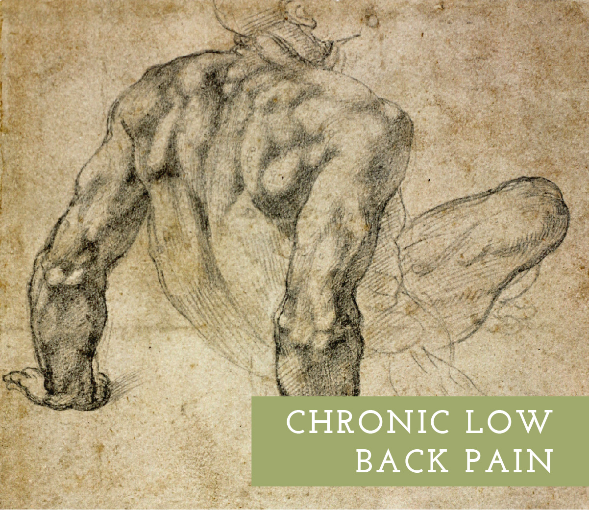 This session would start with a postural assessment to identify the major muscles and joints at play, then ensure proper low back support to maximize comfort during the treatment. A possible combination of effective modalities could include Tui Na, deep tissue, and heat.