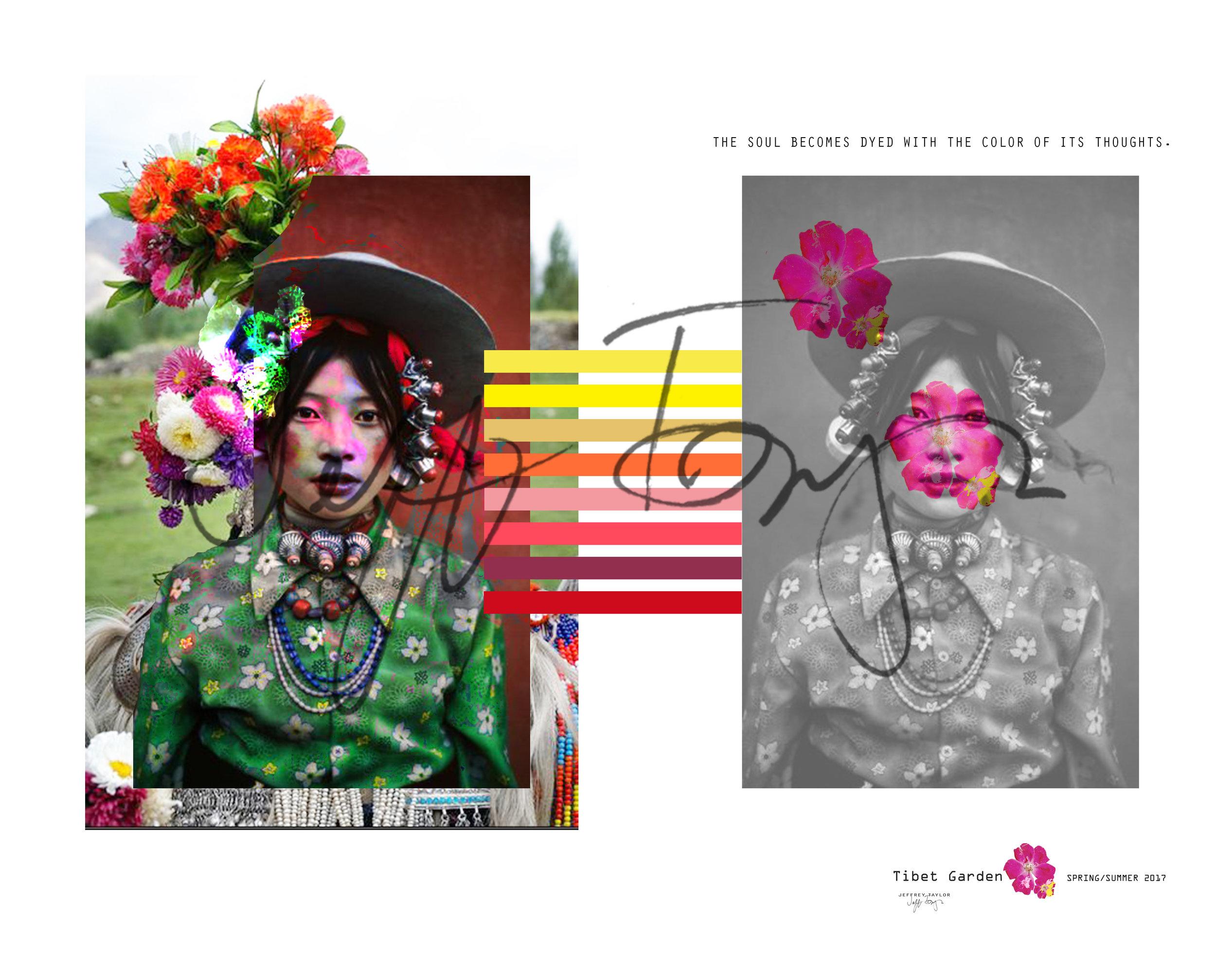 Supima Color Story 1.jpg