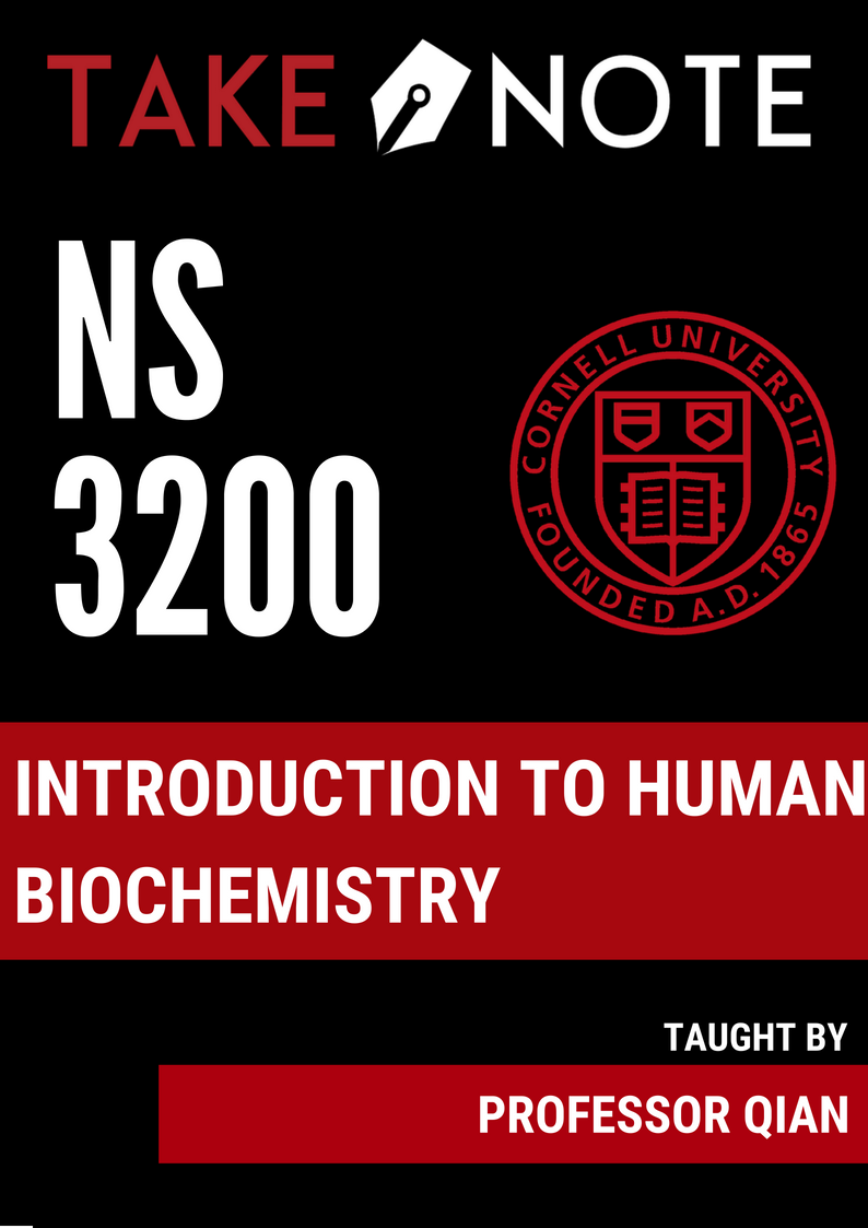 NS 3200.png