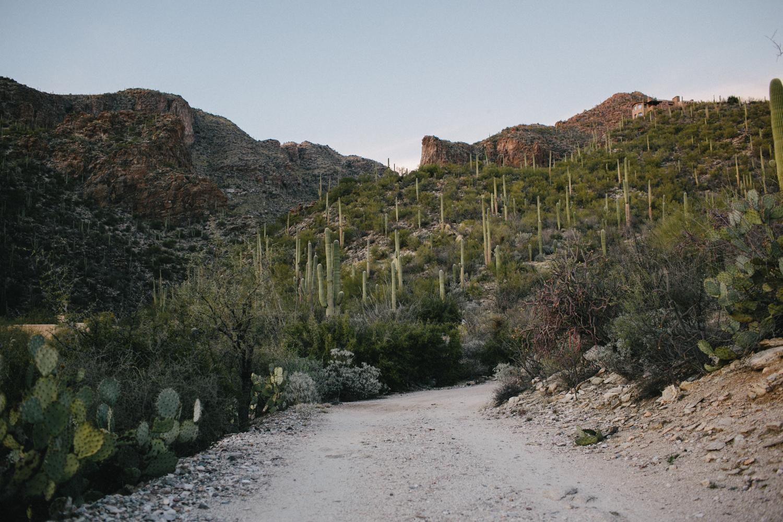 Tucson Arizona Wedding Rachelle Derouin Photographer-78.jpg