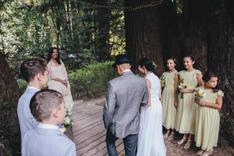 Sebastopol Backyard Wedding Rachelle Derouin Photographer-28.jpg