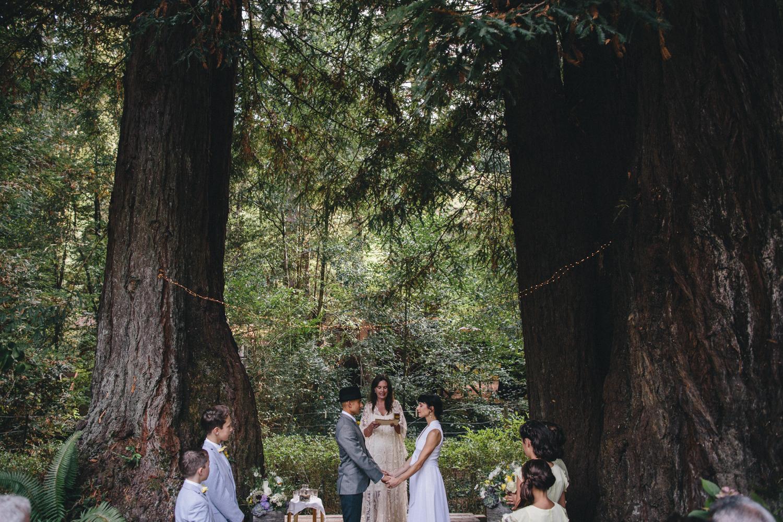 Sebastopol Backyard Wedding Rachelle Derouin Photographer-30.jpg