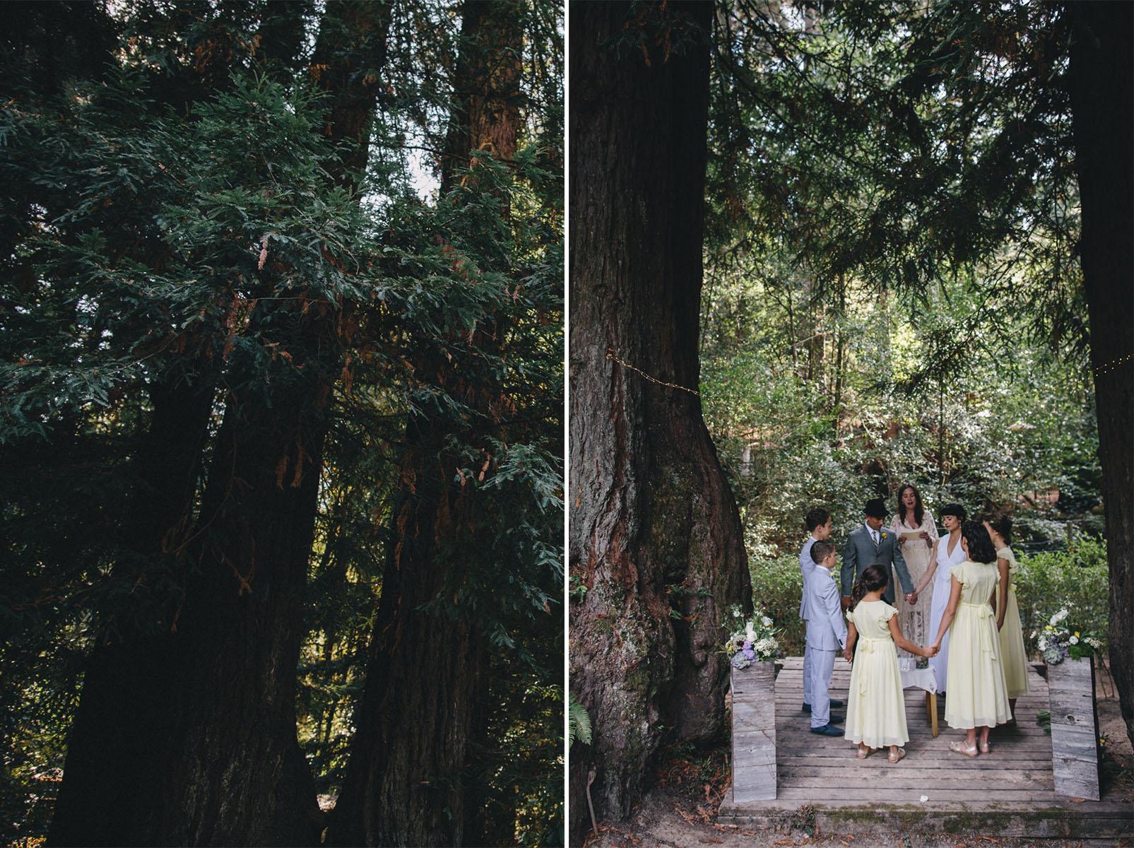 Sebastopol Backyard Wedding Rachelle Derouin Photographer-65.jpg