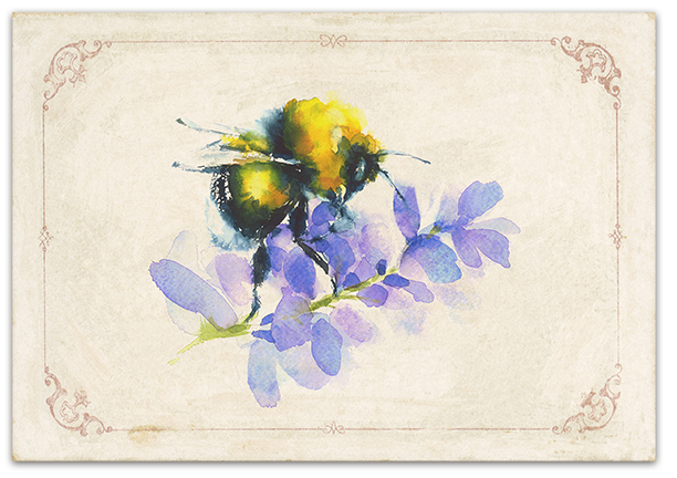 beehiveshoppe beehive shoppe 8beehive + bee + greeting + cardsbumble bee.png