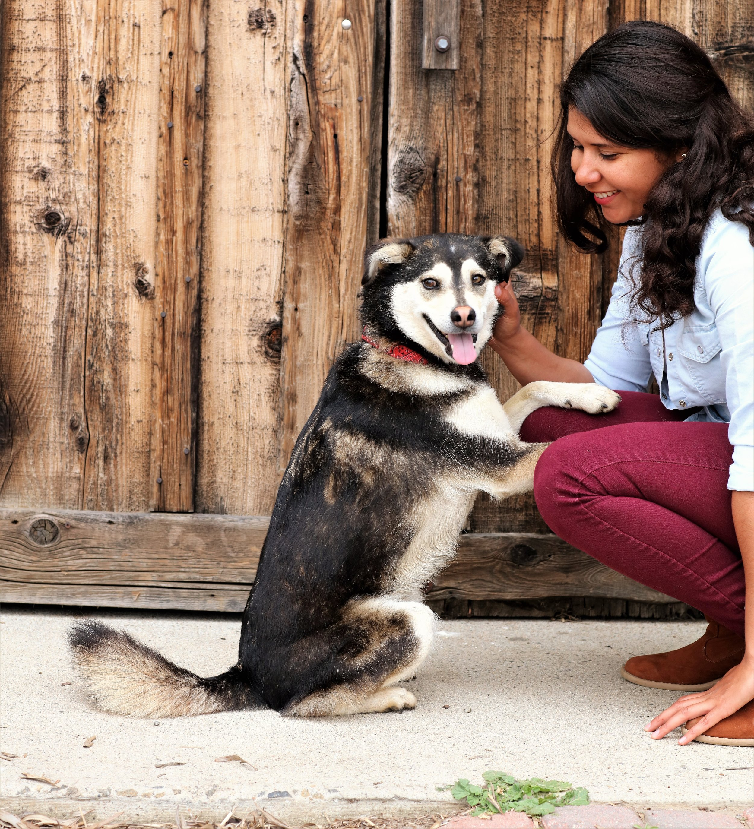 A Hispanic female poses with her companion dog in front of a fence.