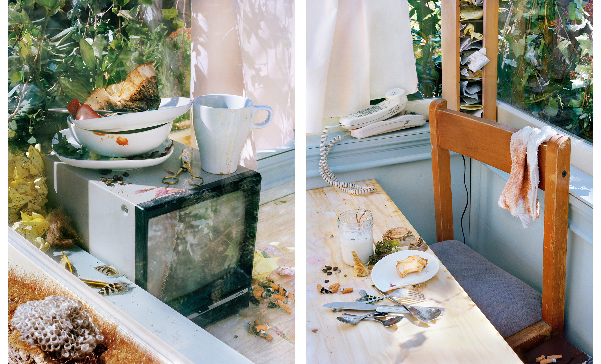 Vivarium_Living_Room_Diptych_v2.jpg