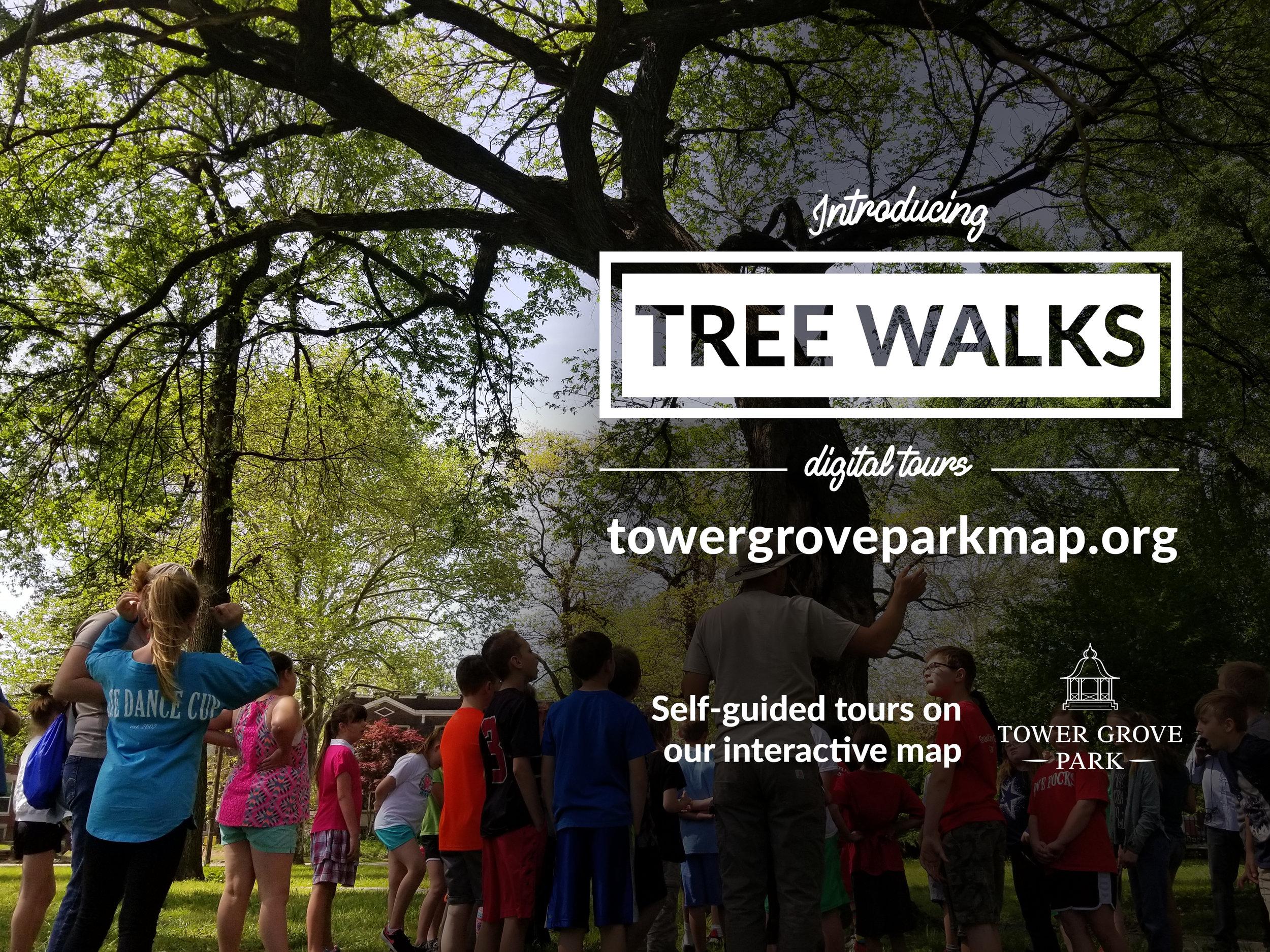 Tree Walks.jpg