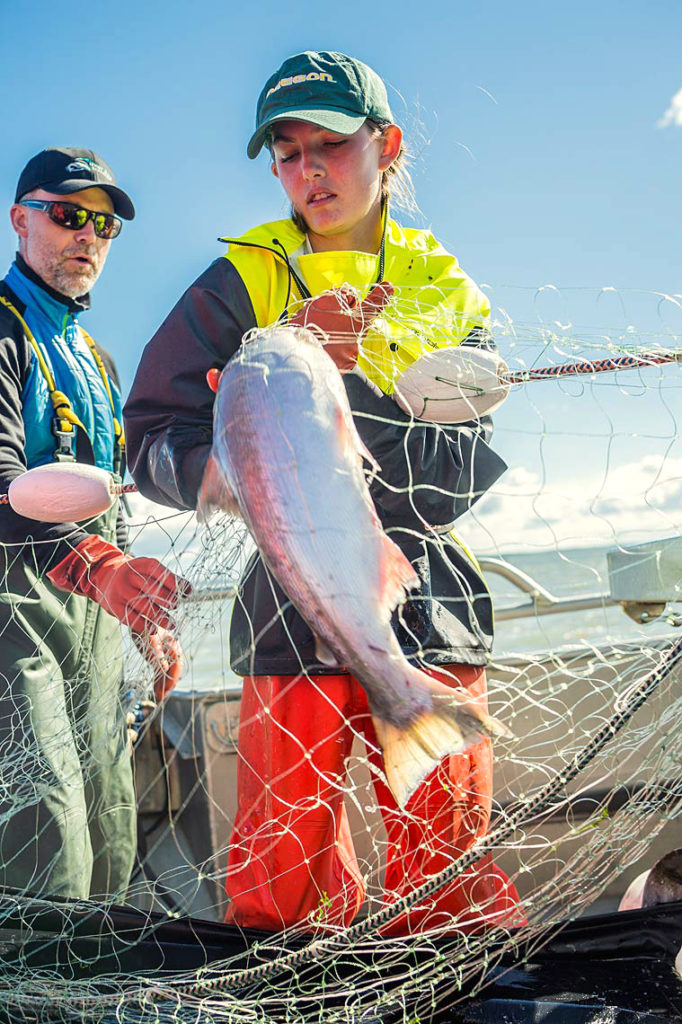 Abbey Knight, Coos Bay, OR, picks a sockeye aboard the F/V Selma as her uncle Chris Knight looks on. It is Abbey's first season commercial fishing and she is a quick study at learning the ropes of being a deckhand in Bristol Bay.