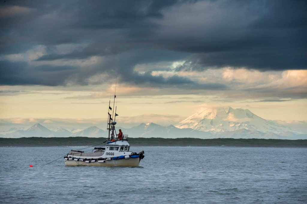 Mount Peulik is one of the many active volcanoes on the Alaska Peninsula, and it serves as a striking backdrop for fishermen in the Ugashik District – even though they do stay focused on their nets!