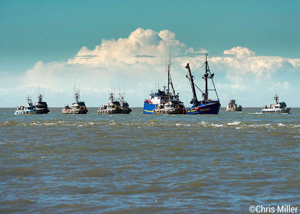Gillnetters sit in a line waiting to deliver to the tender Valiant in the Egegik river mouth.