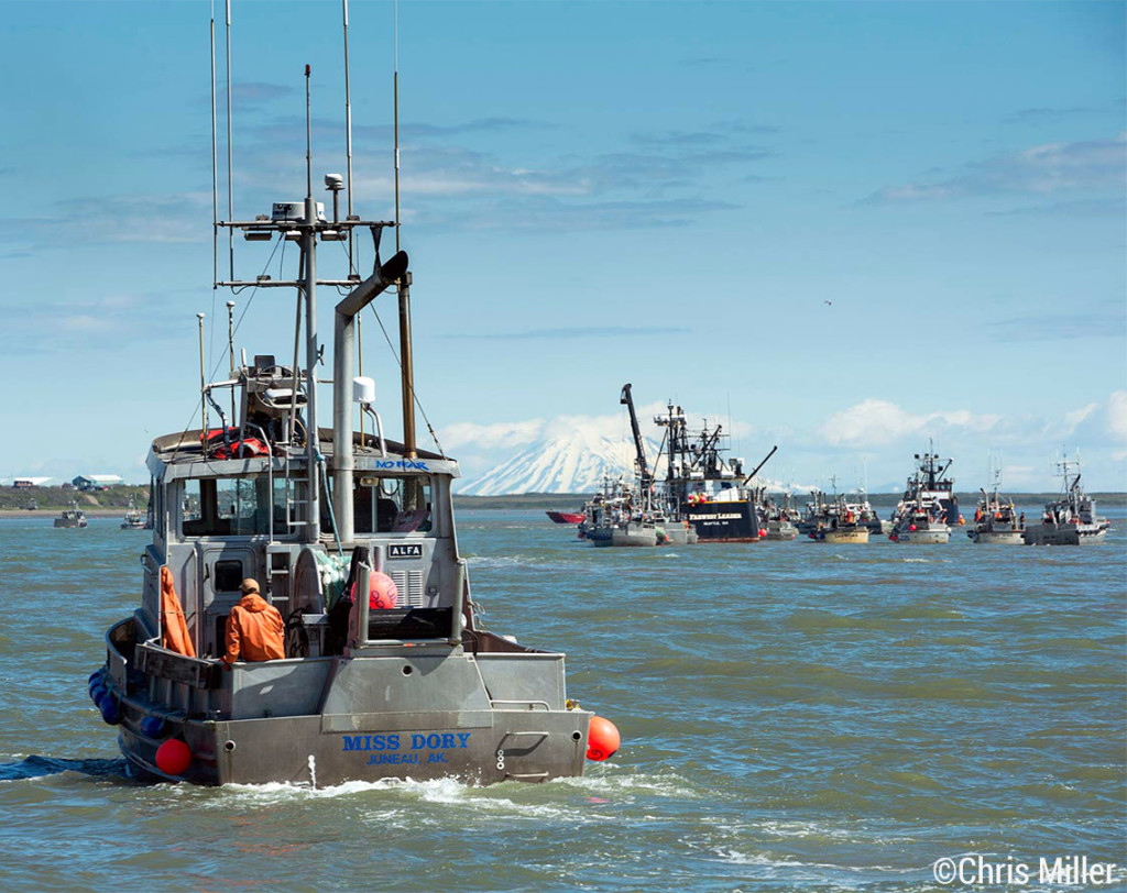 "The F/V Miss Dory and her crew wait to deliver their fish after an opener in Egegik, along with the rest of the fleet. If you ever wondered how the crabbing boats on the TV show ""Deadliest Catch"" spend their summers… Bristol Bay is where many of them work. In the background you can see the Farwest Leader with a raft of fishermen tied off its stern."