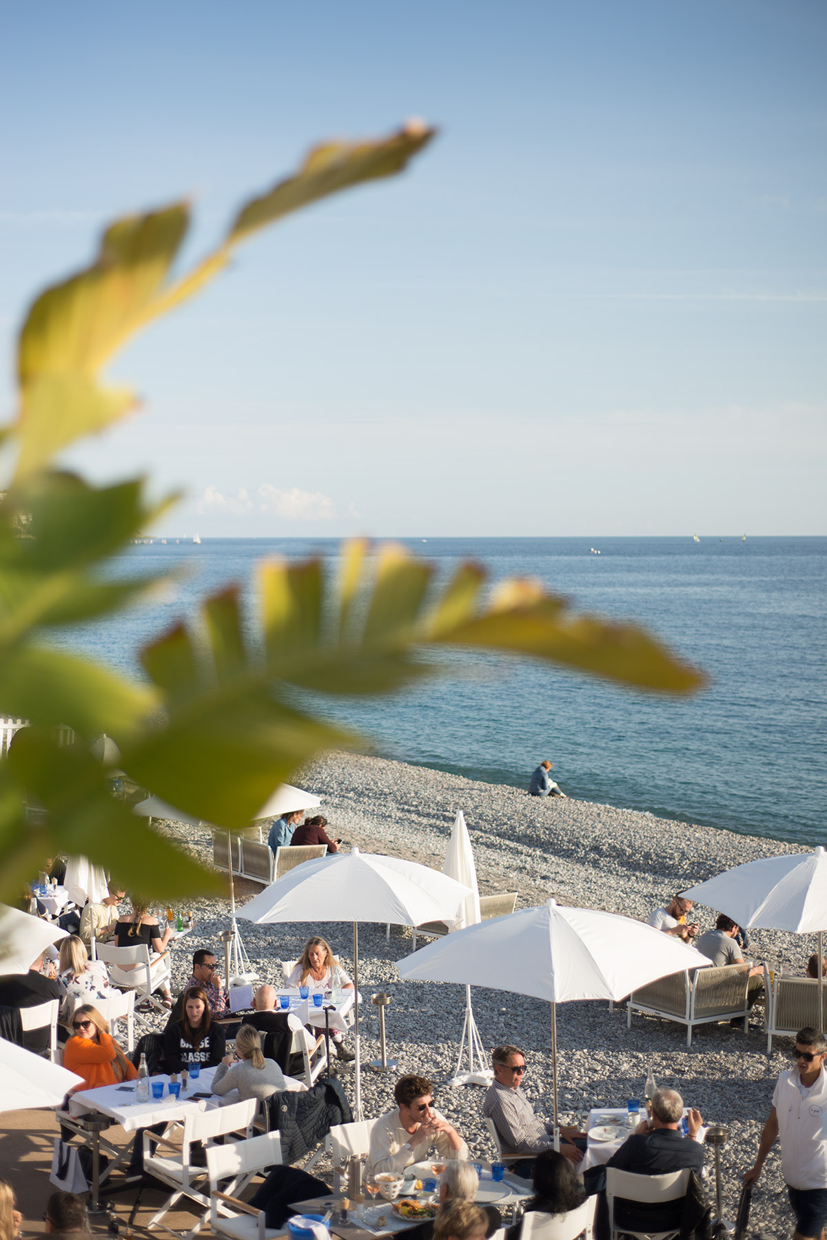 One of my favorite lunches was on the beach at Le Galet in Nice. A version of the eggplant pizza I had there (with rosé!) is going in the book.