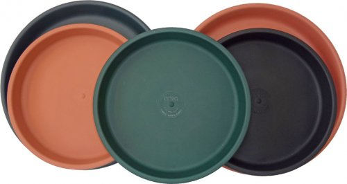 We stock lots of simple tray and dish options that work well for feeding bluebirds.