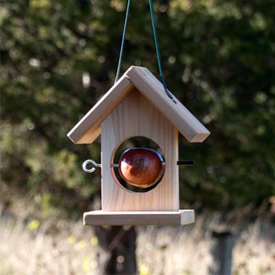 We offer this simple fruit feeder at the shop that works great for apples and oranges.
