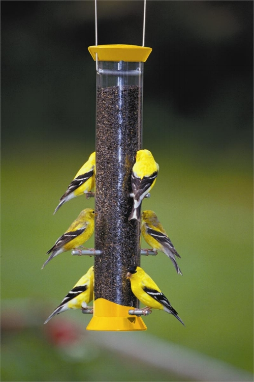 "Droll Yankees new generation 15"" nyjer feeder is one of our top selling goldfinch feeders. A simple well made feeder that will last for years."