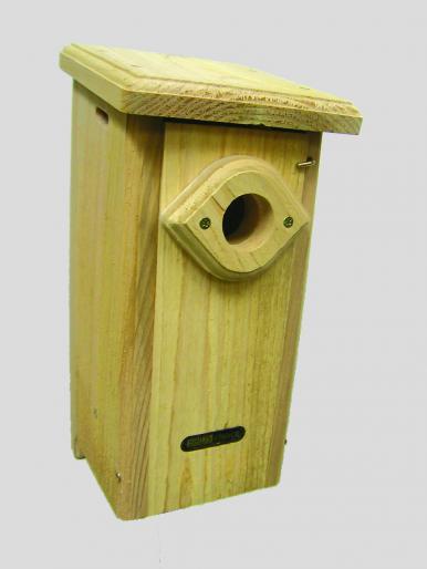Birdes choice BB.jpg