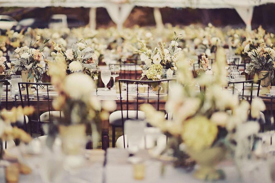 Wedding, Wedding Reception, Reception