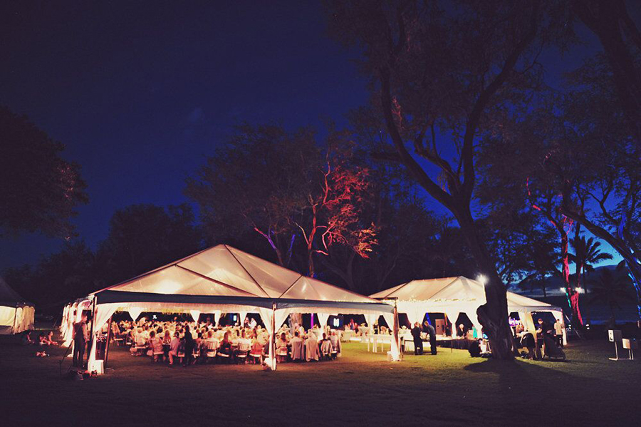 Wedding, Wedding Day, Wedding Reception