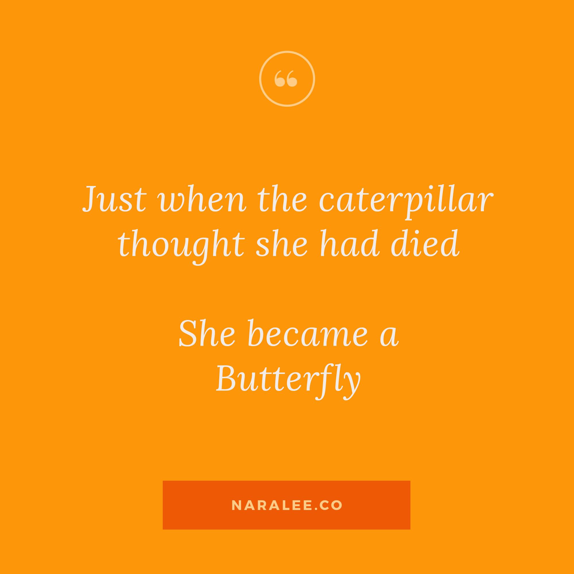 [Inspiration-Quotes] Caterpillars-turning-into-butterflies-Nara-Lee.jpg