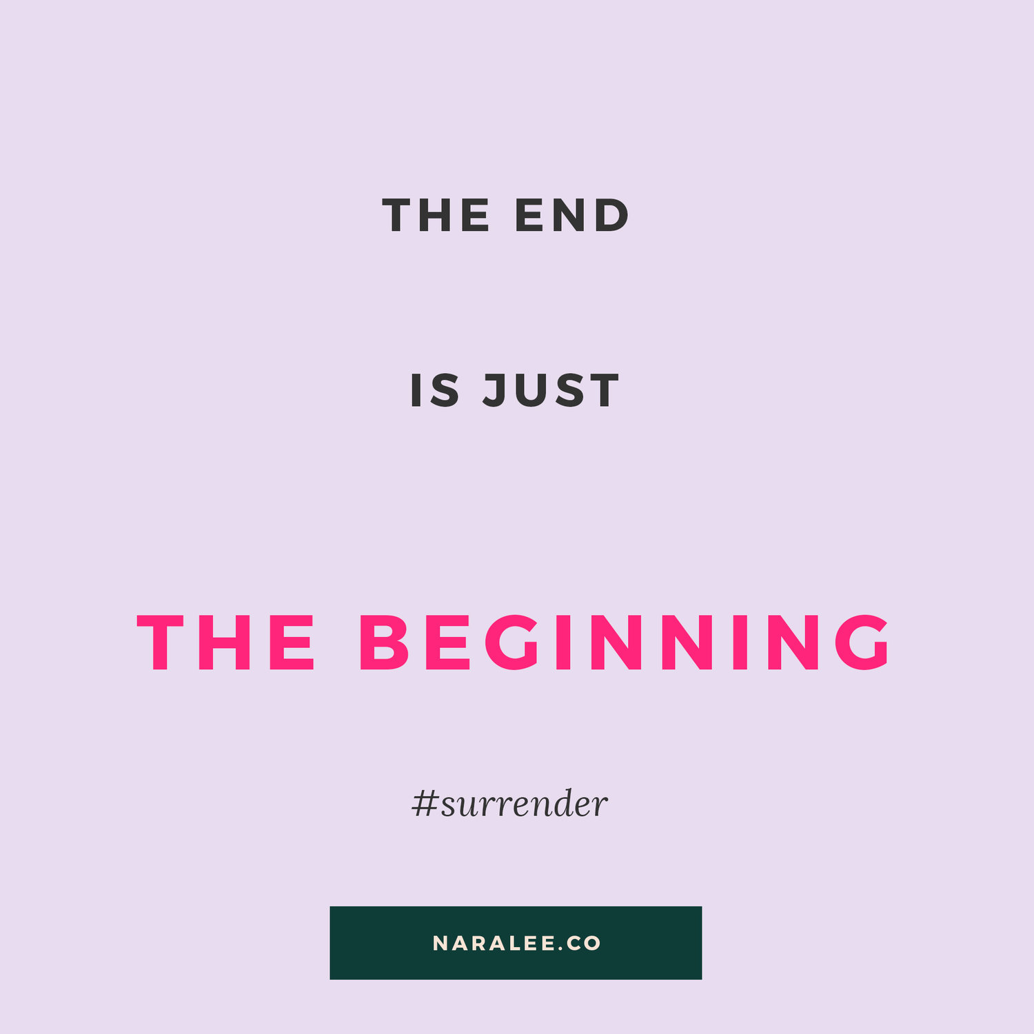 Nara Lee Quotes - The End is just The Beginning.jpg