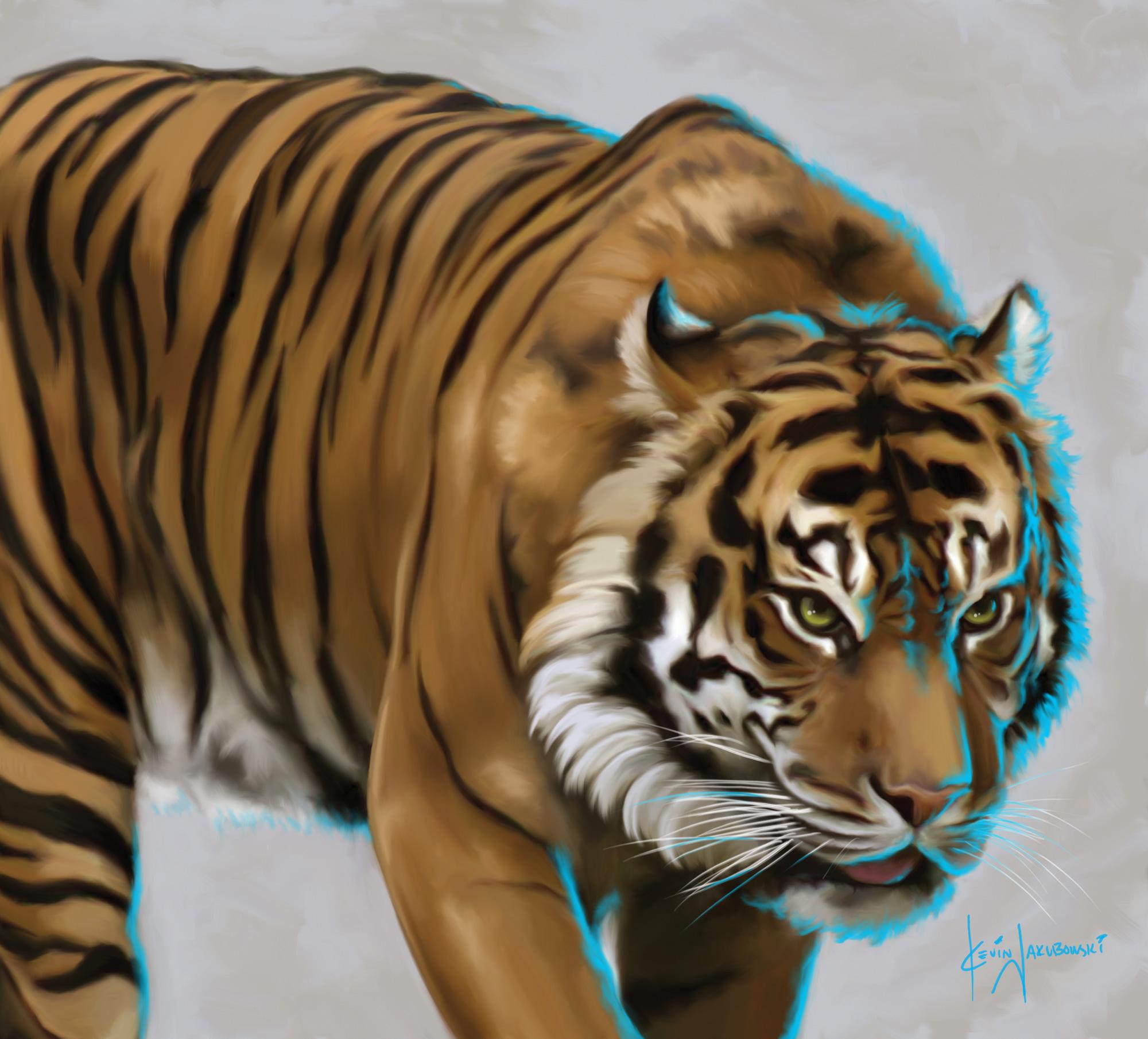 Tiger-2000px.jpg