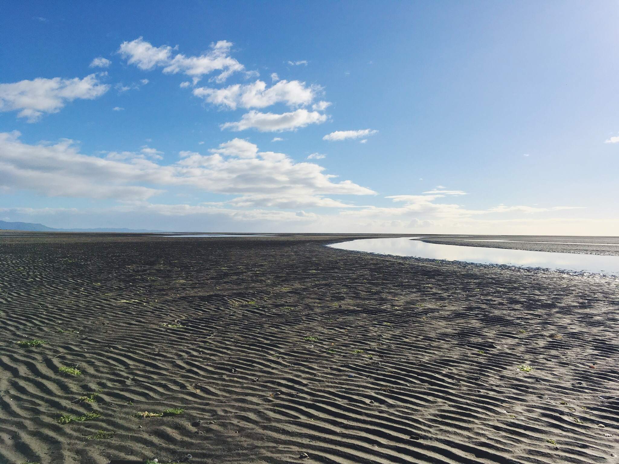 Golden Bay at low tide--reminiscent of those PNW beaches at home.