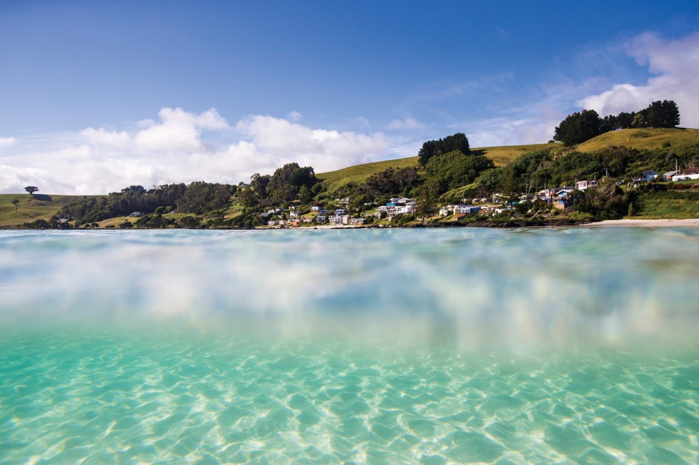 Popular for diving and snorkelling, pristine Boat Harbour Beach on Tasmania's Nature Isle Coast on the island's north west. Pic credit: australiangeographic.com.au