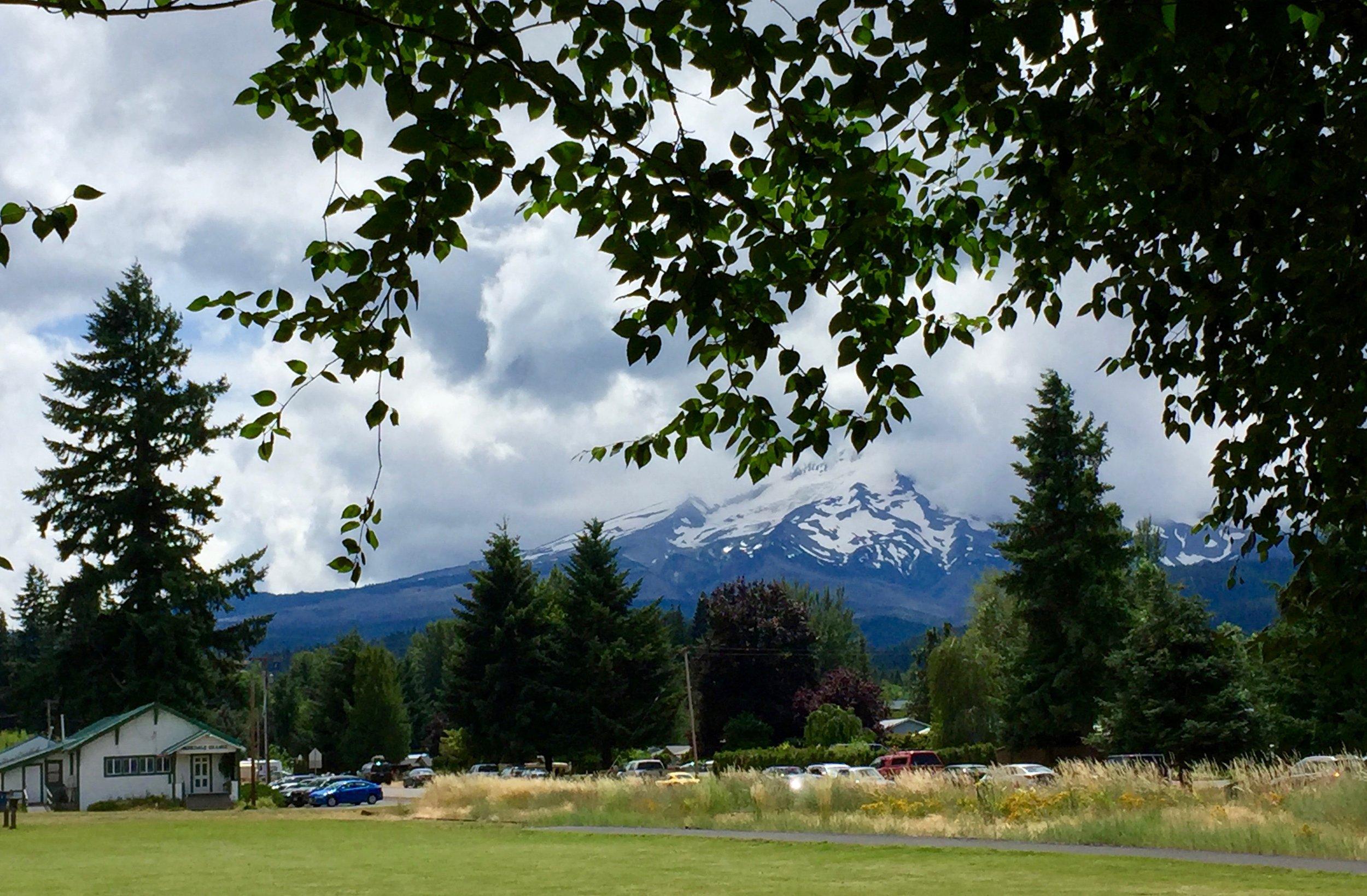 View of Mt. Hood from last year's Kriek Fest