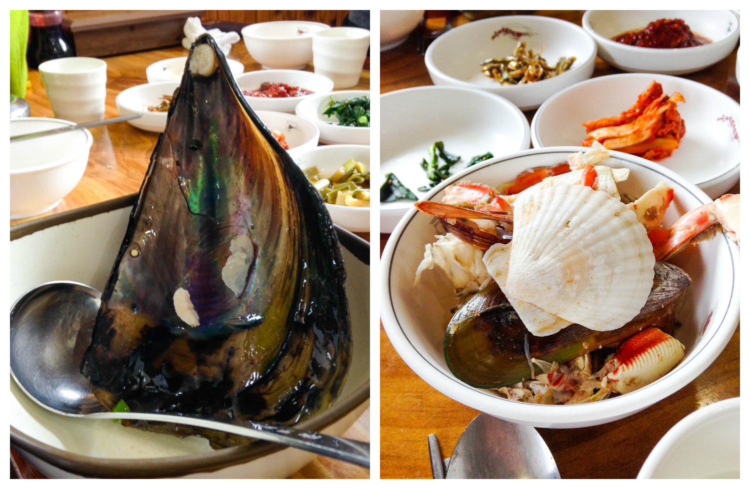 """I still can't get over how  massive  this mussel was!  """"No Crustacean Left Behind 2k14"""""""
