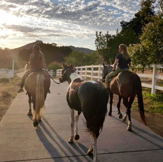 #Colton with his new family.  He's enjoying all the newness and gets along really well with the herd.  We're so happy for them and so proud of him!!! 🙌🏻❤️🐴