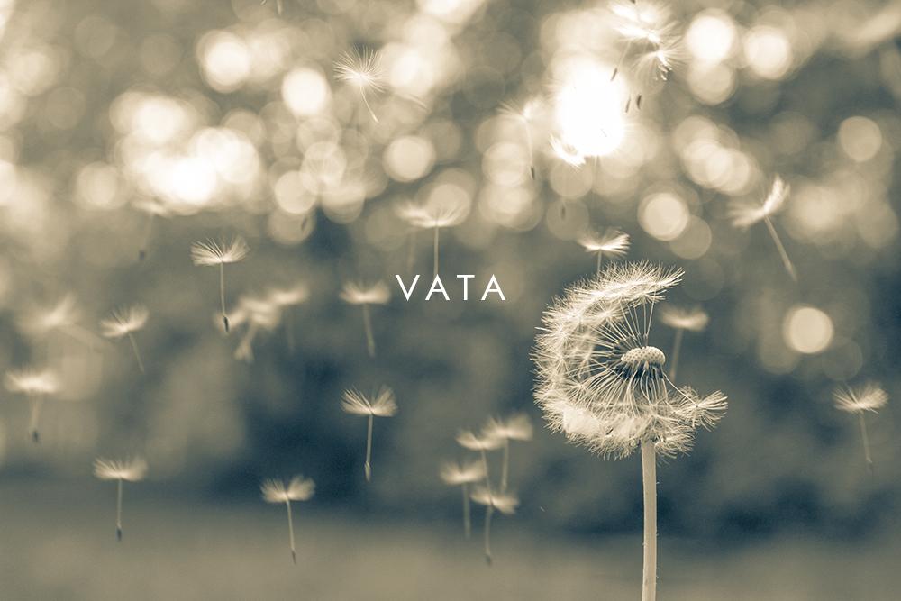moksha_ayurveda_vata_dandelion-1000X600.jpg