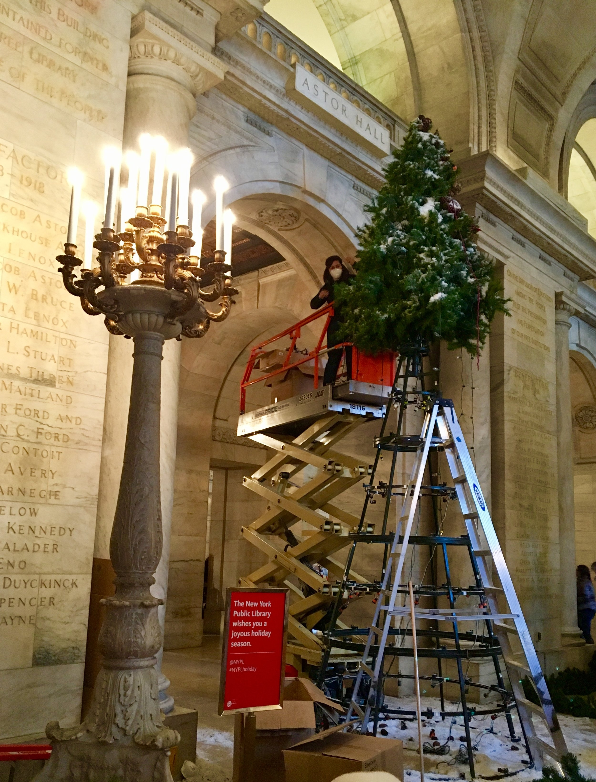 Me, taking down the 20 foot tall New York Public Library Tree. I have a team of 6 with me. Where is everybody?