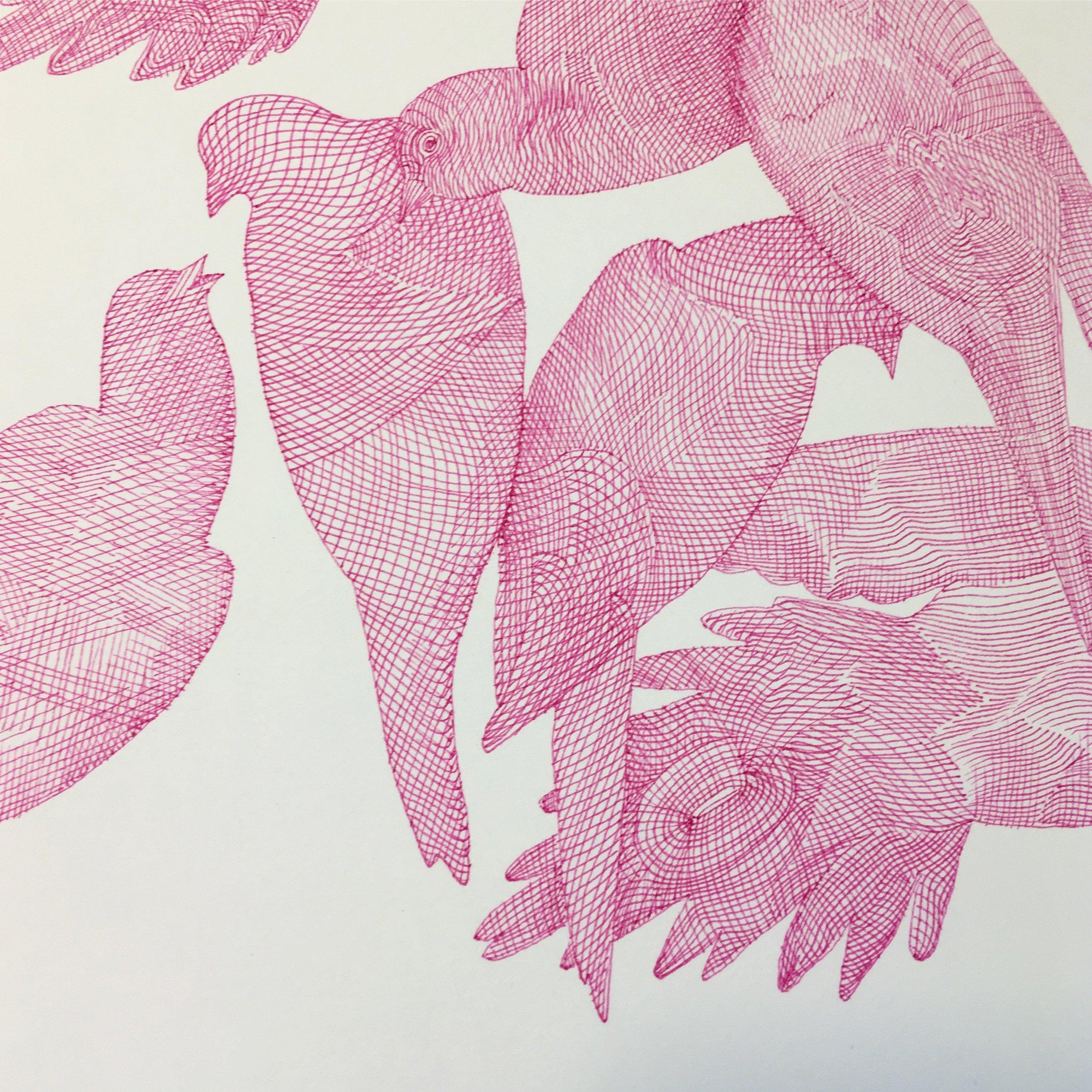 Kirsten Furlong drawing