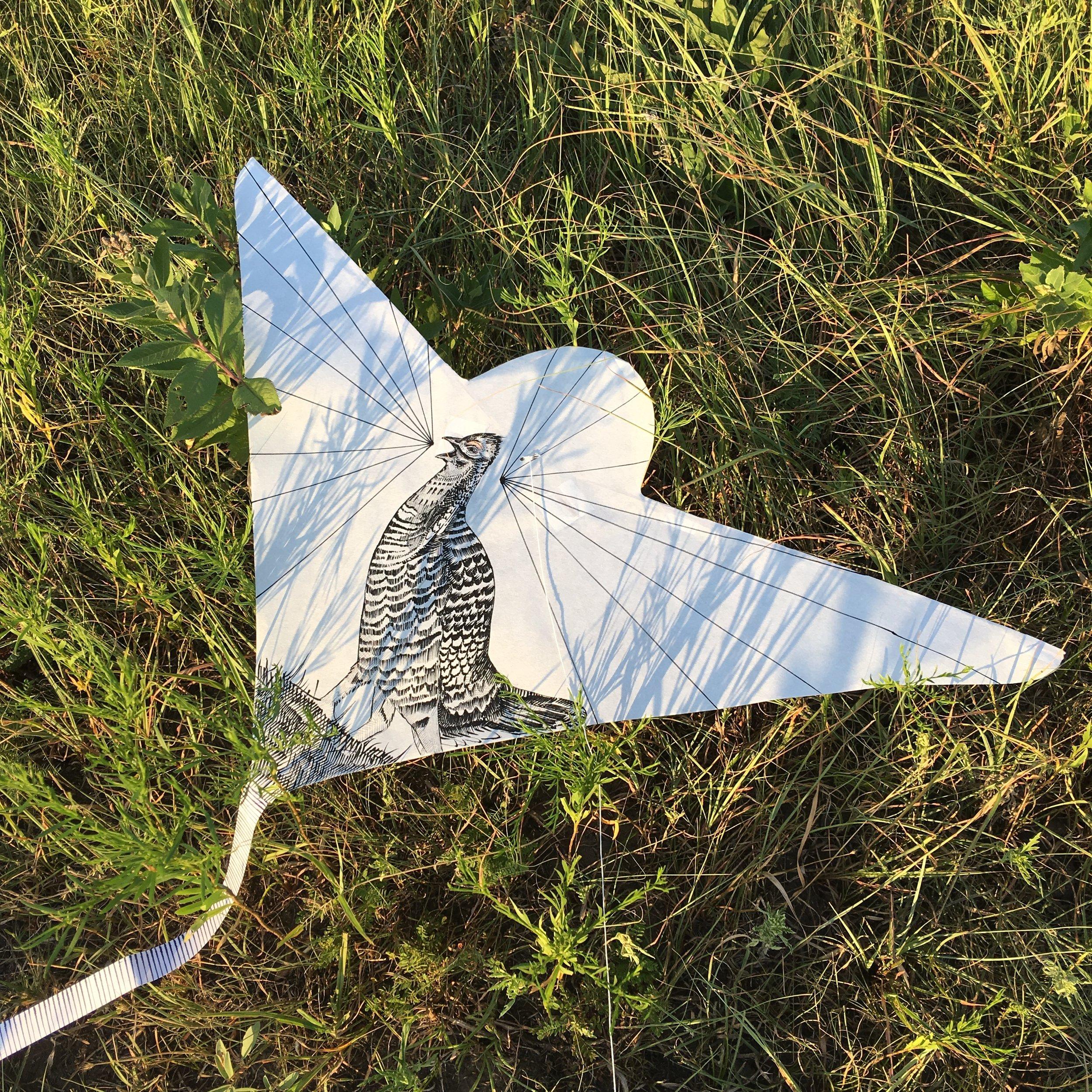 Chicken kite