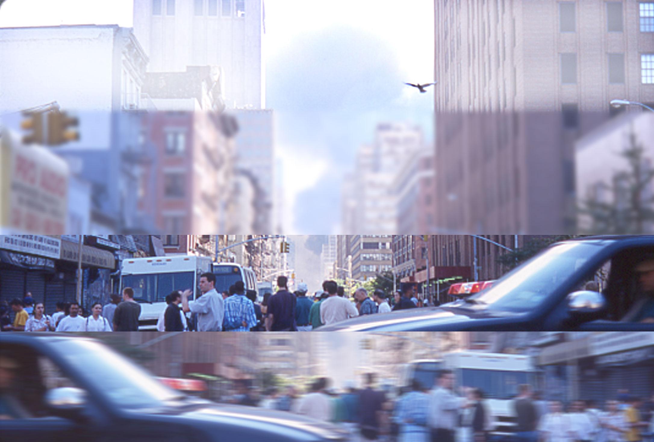Bird, NYC 9/11