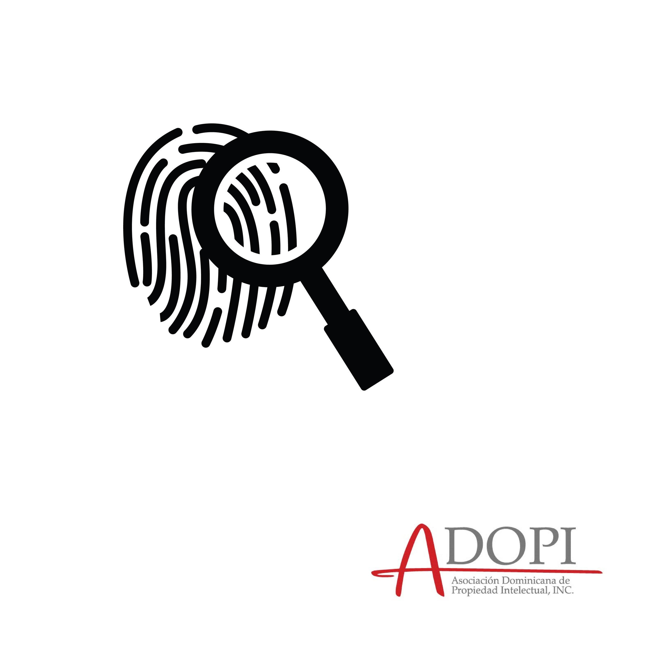 Highlights ADOPI-43.jpg