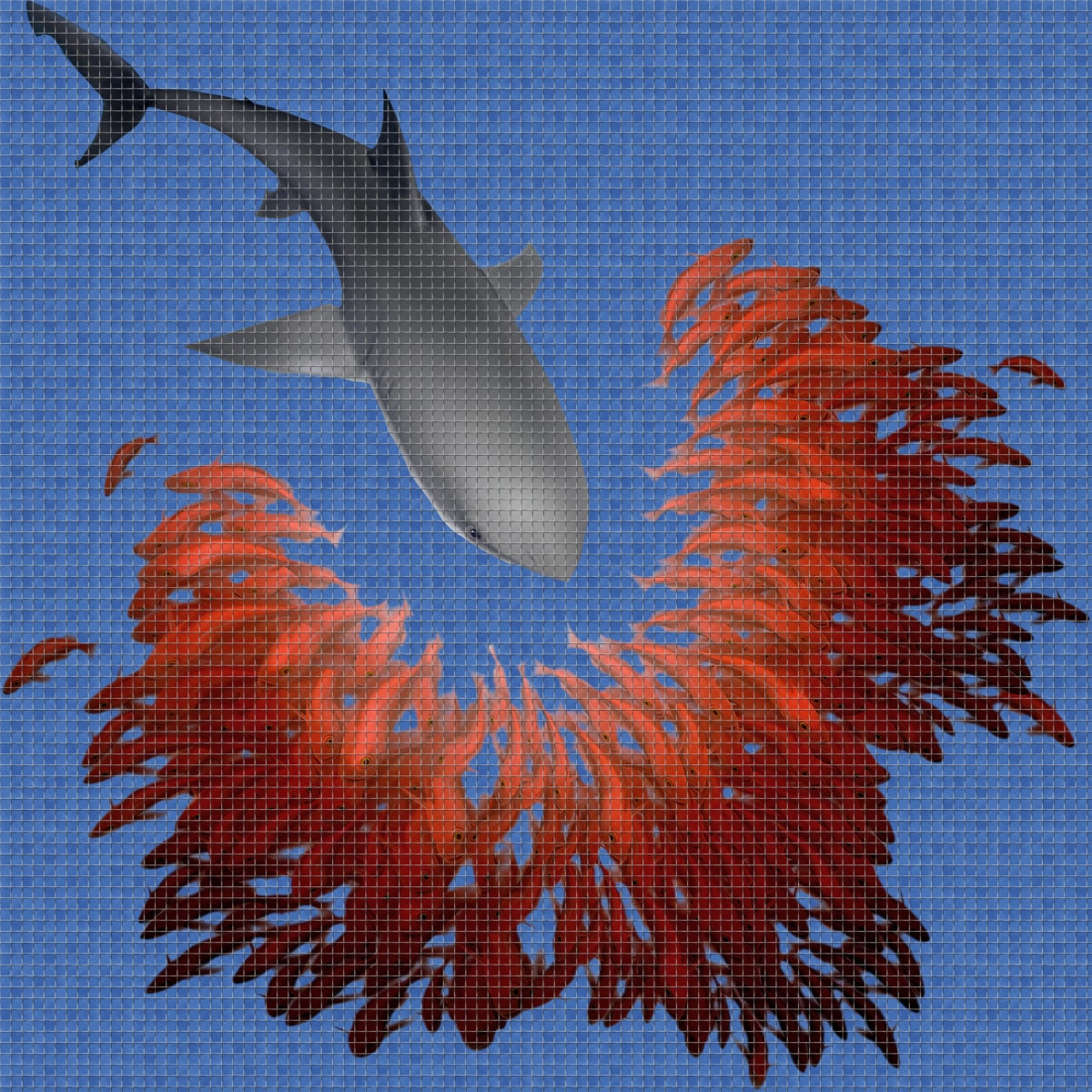 Shark-Digital-Print-Mosaic-Ezarri.jpg